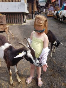 Family friendly things to do in and around Morzine. Goat Village. Lindarets